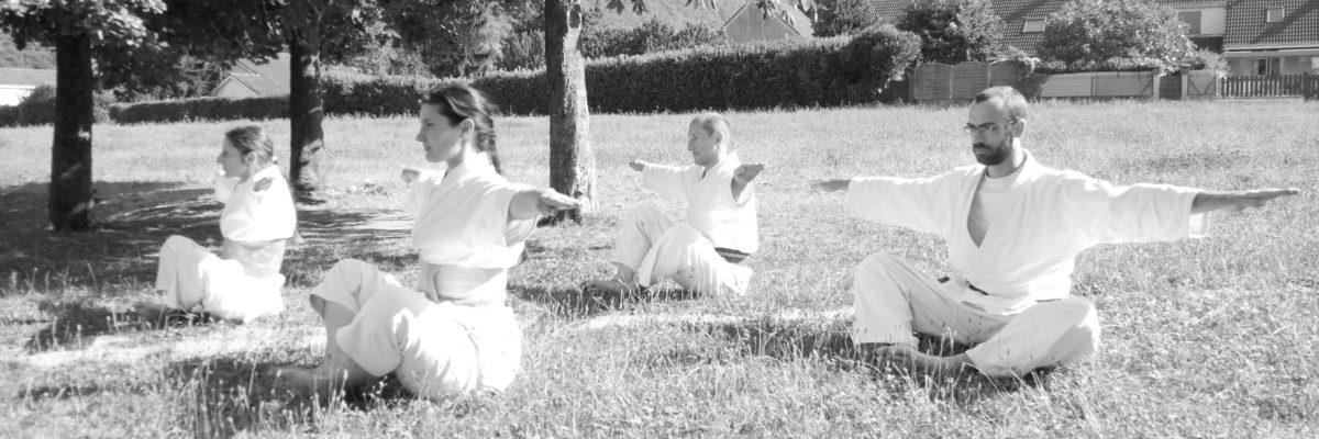 Aikishintaiso Grenoble Kobayashi ryu posture marche équilibration énergies sensei relevé