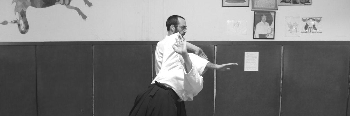 Aikido Grenoble Kobayashi ryu taijutsu irimi